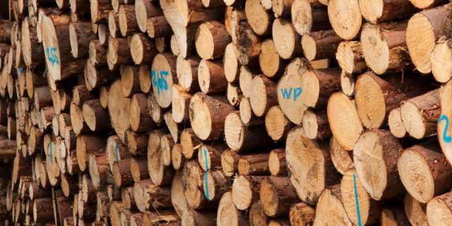 Image for Efficient, Fast and Scalable WordPress development with Timber (Twig)